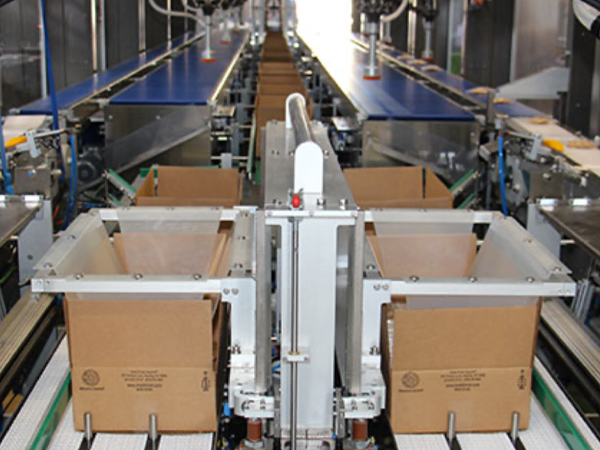 Complete Packing Lines for the food industry